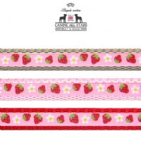 DOG LEAD - STRAWBERRY FARM (RIBBON 10mm)
